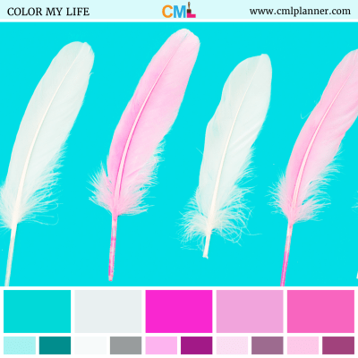 Feather Brights - Color Inspiration from Color My Life