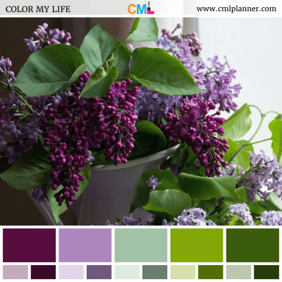 Lovely Lilacs - Color Inspiration from Color My Life