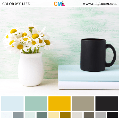 Color Palette #061018 - Color Inspiration from Color My Life