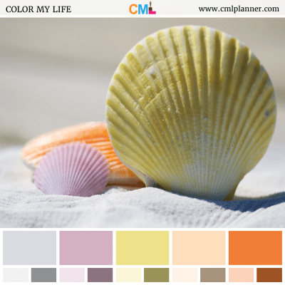Color Palette #062418 - Color Inspiration from Color My Life