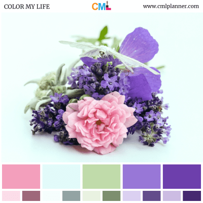 Color Palette #071818 - Color Inspiration from Color My Life