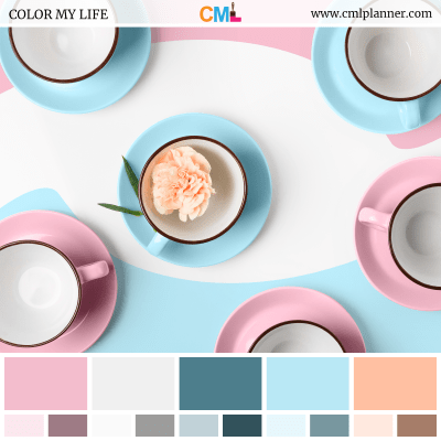 Color Palette #091218 - Color Inspiration from Color My Life