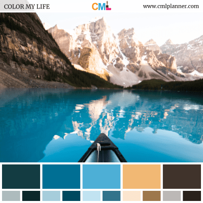 Color Palette #091718 - Color Inspiration from Color My Life