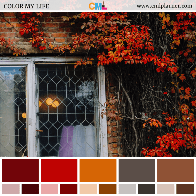 Color Palette #101318 - Color Inspiration from Color My Life