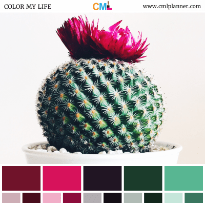 Color Palette #101518 - Color Inspiration from Color My Life