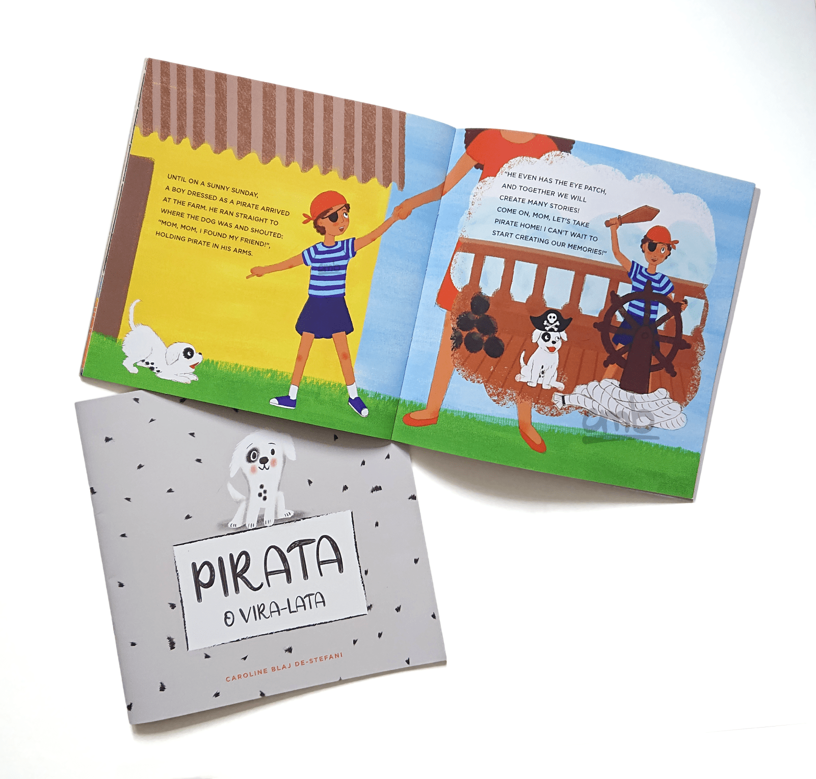 Pirate cover and illustration