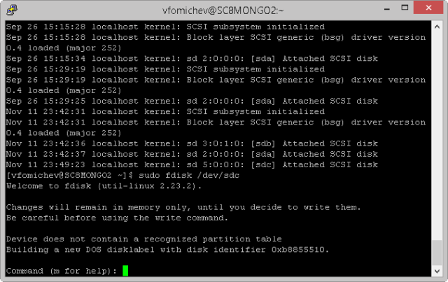 Creating Filesystem in Newly Attached Disk
