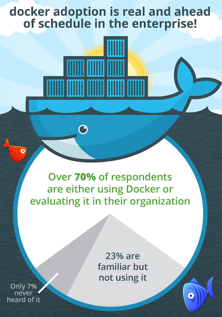 Docker StackEngine survey results.