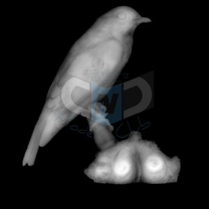a free cnc pattern / model of a blue bird for carvewright compucarve shopbot shark cnc machines