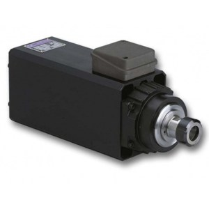 Colombo RV 90/2 spindle motor