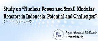 Nuclear Power and Small Modular Reactors in Indonesia: Potential and Challenges