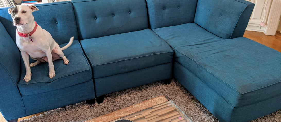 Brian's couch a little rough