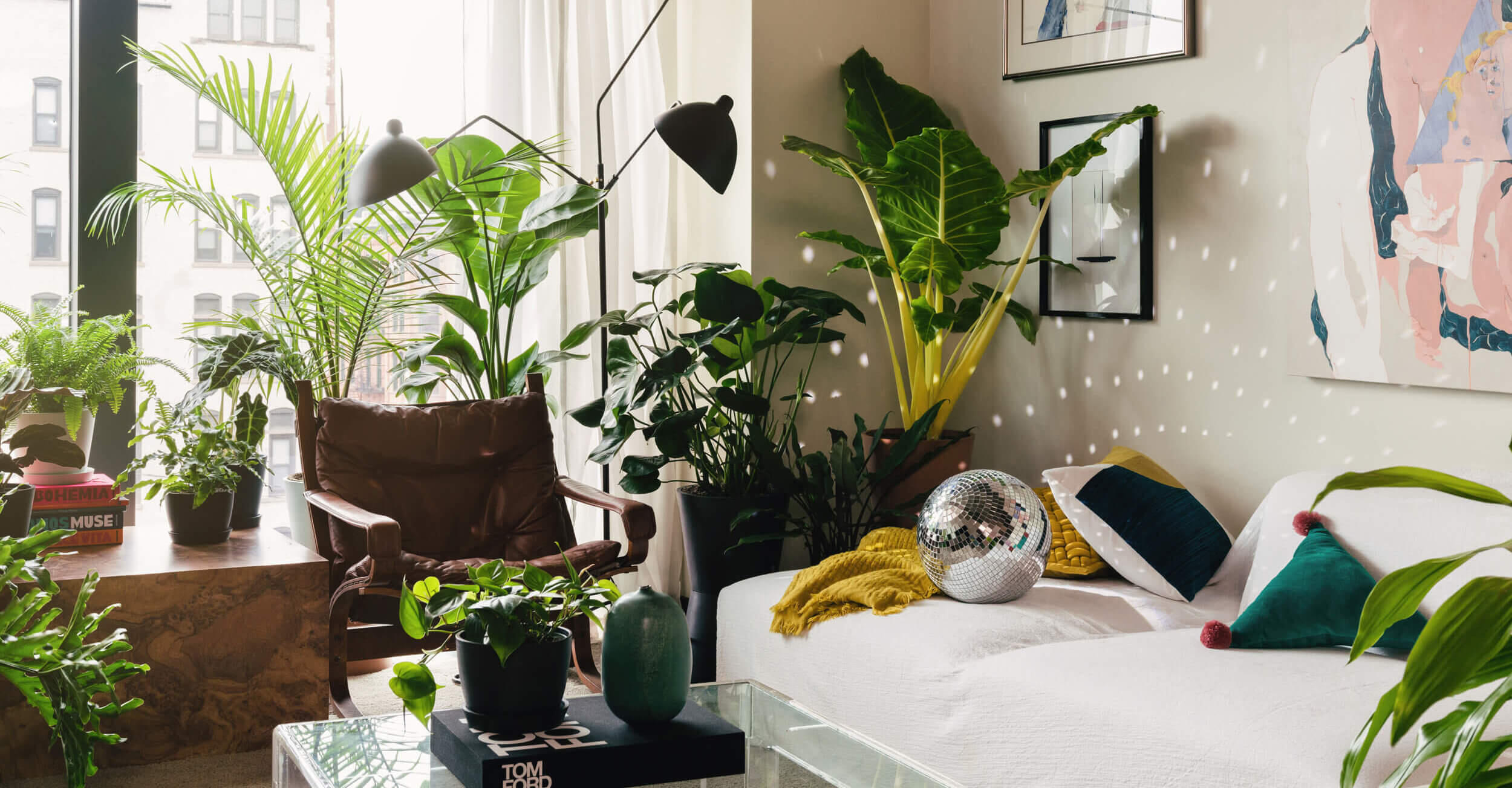 The best places to buy plants online     - CNET