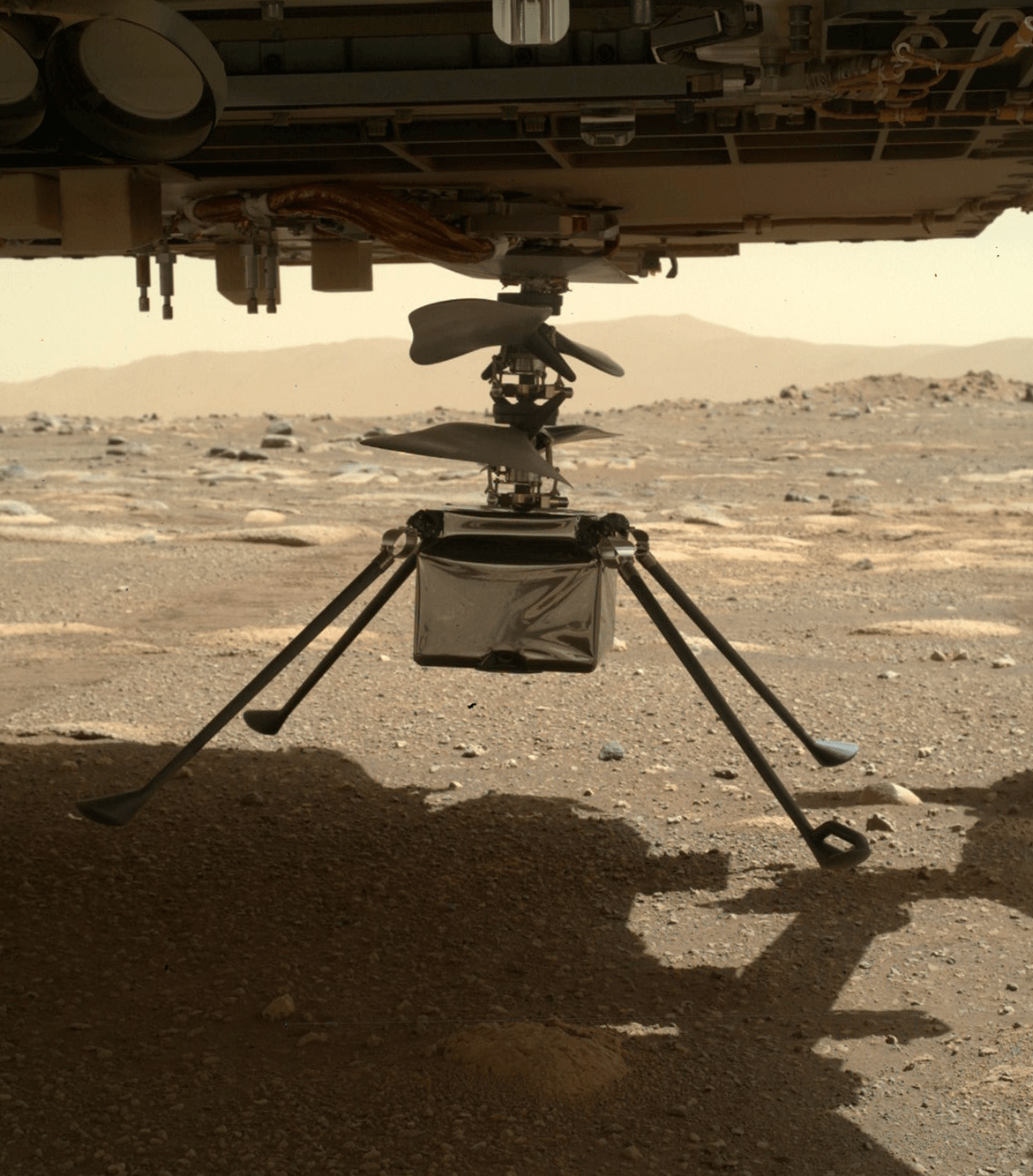 NASA Ingenuity helicopter has four legs which extends out of its body to support its weight and balancing. The helicopter was hidden in the belly of the Perseverance rover and was recently released so it can commence its own mission on the Red Planet.