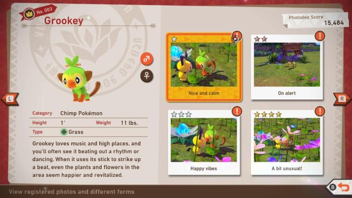 Photodex for Grookey in New Pokemon Snap
