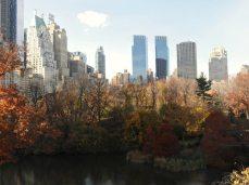 L'automne à Central Park