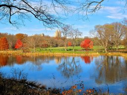 L'automne fait rougir les feuilles de Central Park