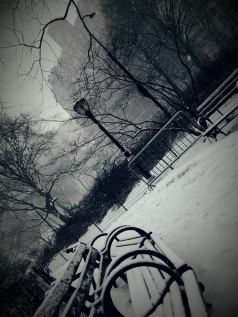 La neige rend Central Park encore plus photogénique ! (Photo Nathalie Dabompre)