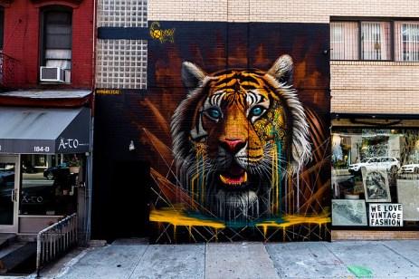 tigre sonny little italy new york