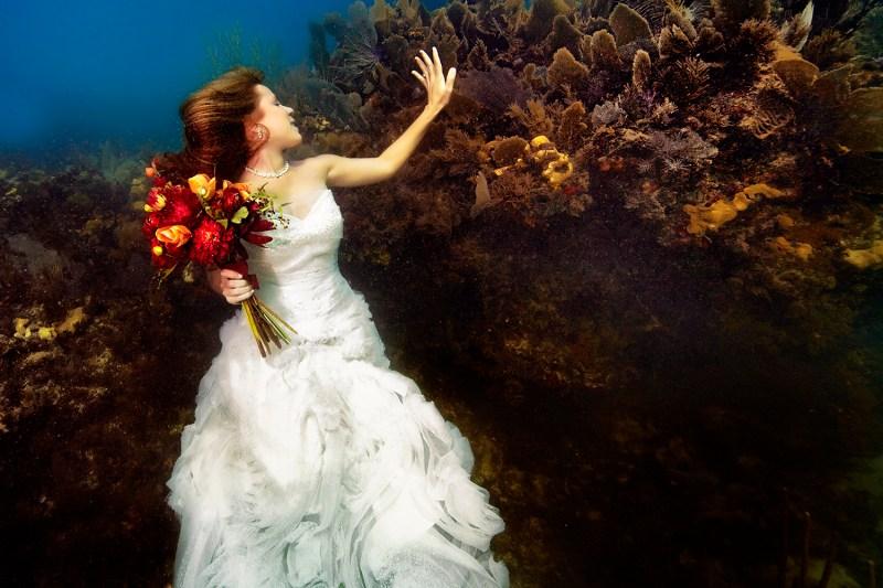 Underwater Wedding Photographs