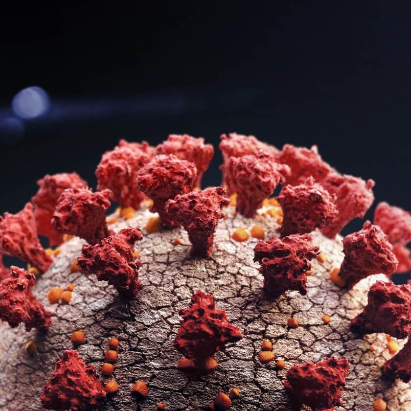 Coronaviruses;  Covid-19
