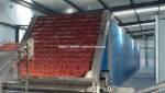 Multi-Layer Dryer for Chili
