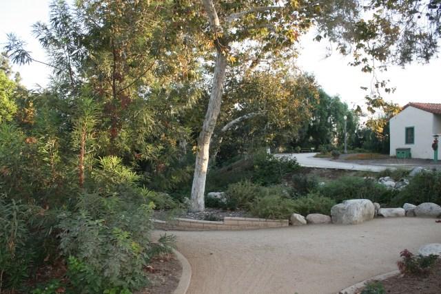 California Native Driveway Photo: Marie Barnidge-McIntyre