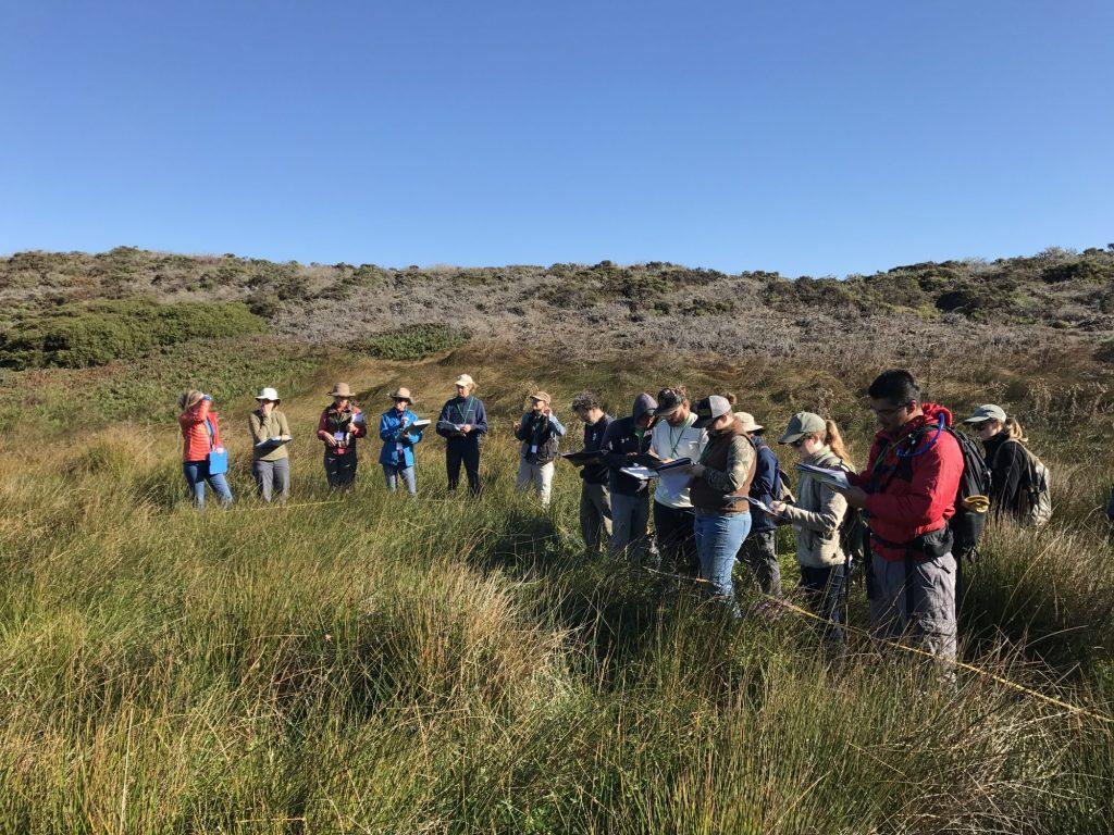 2017 Vegetation Rapid Assessment/ Relevé workshop, Bodega Bay. Credit Becky Reilly.