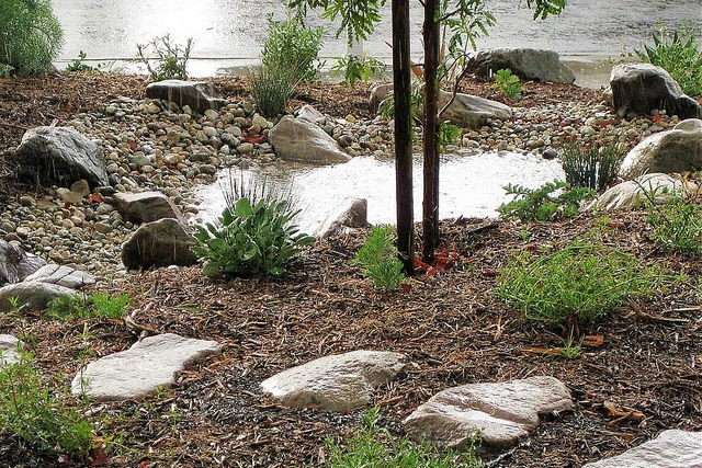 Free Watershed Wise Landscape Professional Training class