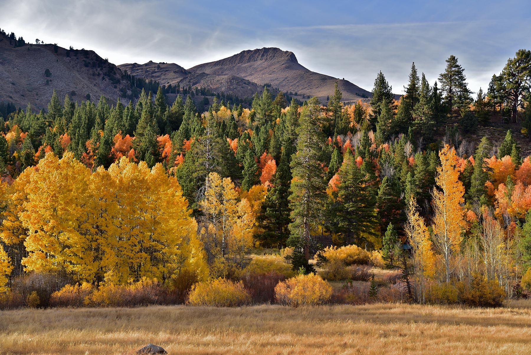 Hope Valley. Credit Jeff Bisbee.