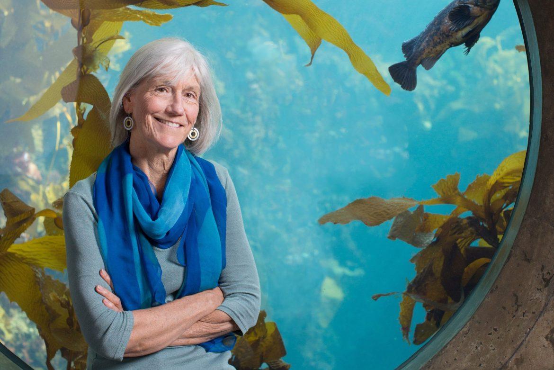 Julie Packard