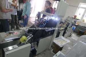 Wooden Tongue Depressor Size Selecting, Surface Vision Selecting and Bundling Packing Line