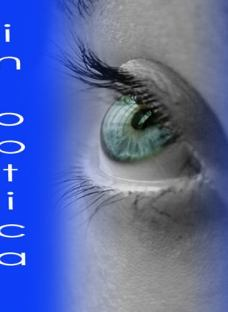 http://articulo.mercadolibre.com.ar/MLA-613196336-lentes-de-contacto-tricolor-uso-anual-superiores-a-solotica-_JM