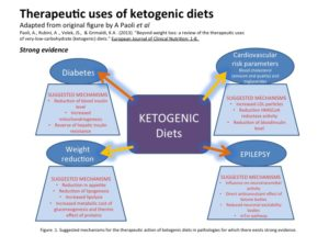 ketogenic,diet,high-fat,moderate-protein,low-carb