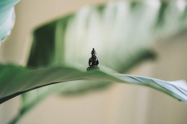Meditatie: waarom is het zo moeilijk vol te houden?