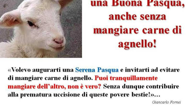 Buona Pasqua, anche senza mangiare carne di agnello! (campagna sociale del coach motivazionale Giancarlo Fornei – 20 aprile 2019)…