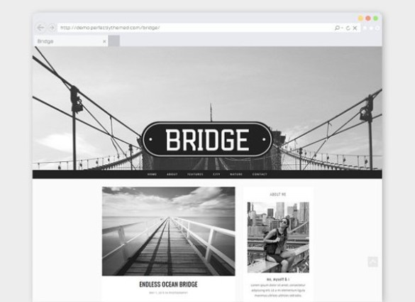 10 Must-have WordPress Themes for Programmers