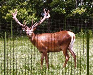 Deer control net mesh fence