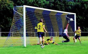 Continental style football goal net
