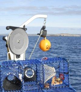 Northlift fishing line hauler