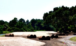 Golf_17th_tee