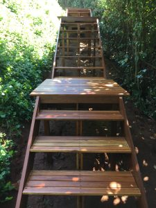 Timber Staircase with Walkway leading to Sheffield Beach