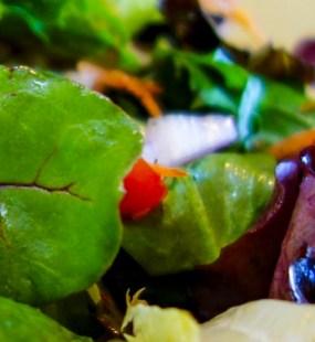 opl-salad2