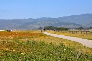 Community Invited to Participate in Poplar Beach Gateways Plan @ Half Moon Bay Library