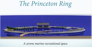 The Princeton Ring ~ Saltwater, Heated Community Pool in HMB?!