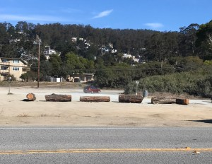 What's Up with the Logs at the Surfer's Beach Parking Lot?