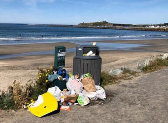 Mayor Rarback Is On Top of the Surfers' Beach Garbage Problem ~ Complicated Jurisdiction
