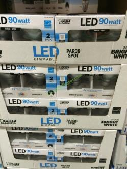 costco-1041429-led-light-bulb-par-38-spot-weatherproof-all
