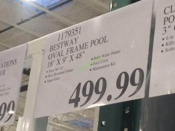 Bestway Oval Frame Pool 18 X 9 X 48 Costcochaser