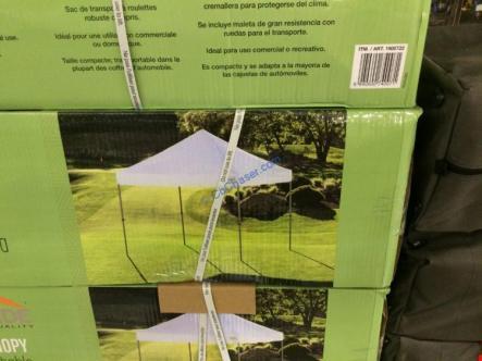 Proshade 10′ x 10′ Pop-up Canopy – CostcoChaser